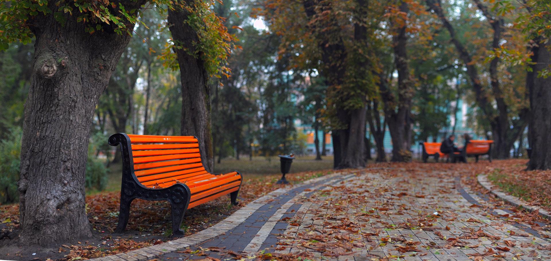 BENCHES IN CITY PARK © Sergey Zavalnyuk   Dreamstime.com