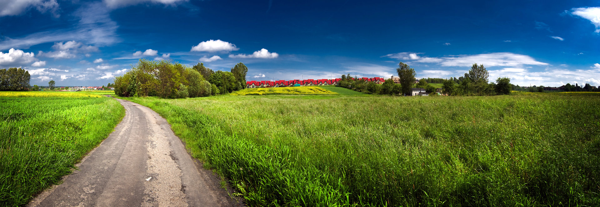 GREEN FIELD WITH BLUE SKY ABOVE PANORAMA © Paweł Sajdyk | Dreamstime.com