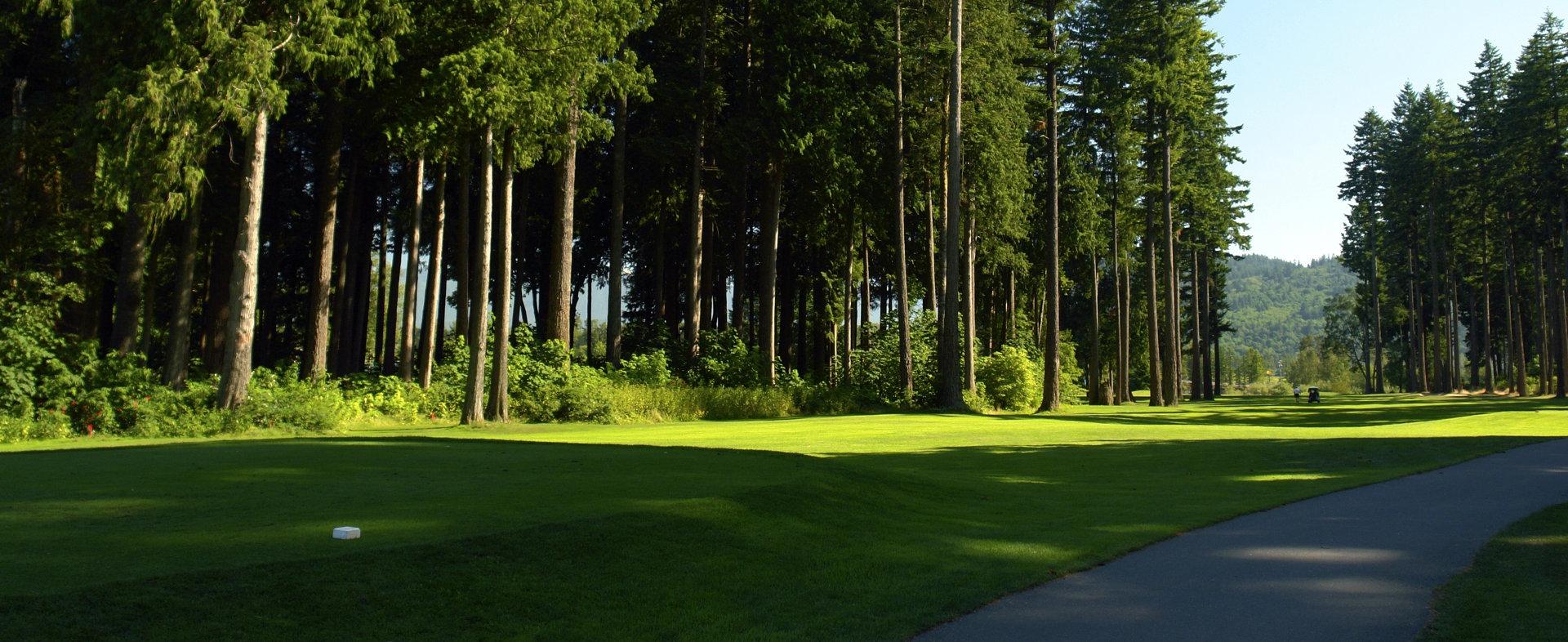 GOLFING GOLF FAIRWAY TREES PATH © Mark Hryciw   Dreamstime.com