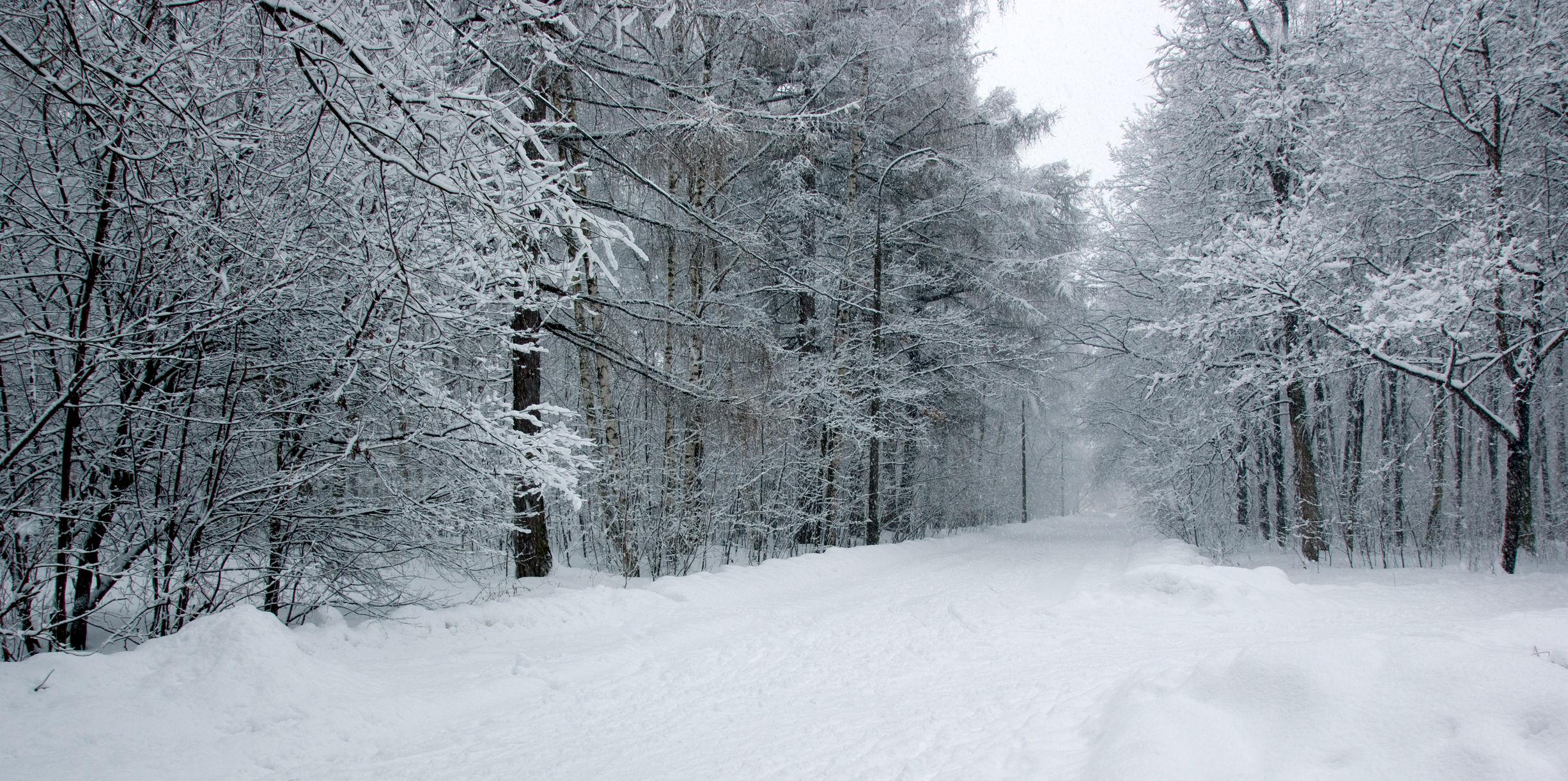 SNOW PARK © Alkolin | Dreamstime.com